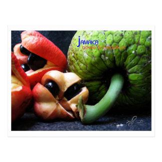 ジャマイカのアキーのフルーツおよびパンノキ ポストカード