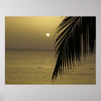 ジャマイカの日没ポスター ポスター
