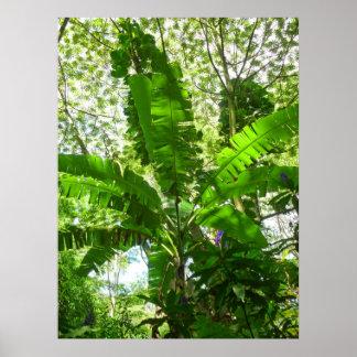 ジャングルのおおいの下のバナナ ポスター