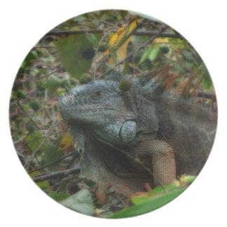 ジャングルのイグアナ プレート