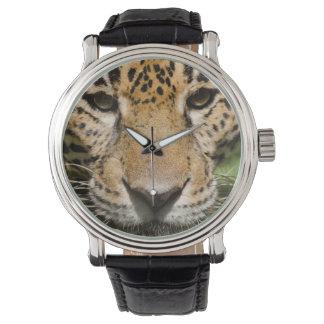 ジャングルのエンクロージャの捕虜のジャガー 腕時計