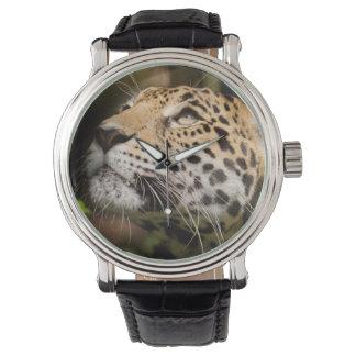 ジャングルのエンクロージャ3の捕虜のジャガー 腕時計
