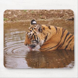 ジャングルの王室のなベンガルトラdrnking水 マウスパッド