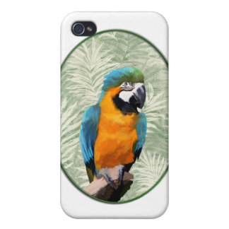 ジャングルの背景を持つ青及び金ゴールドのコンゴウインコ iPhone 4 CASE