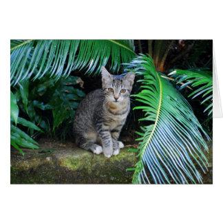 ジャングルの虎猫の子ネコカード カード