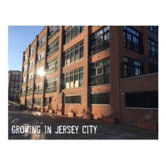 ジャージーシティー-堤防の打撃の成長 ポストカード