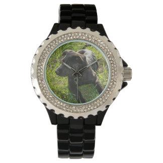 ジャーマン・シェパードの子犬 腕時計