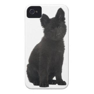 ジャーマン・シェパードの子犬 Case-Mate iPhone 4 ケース