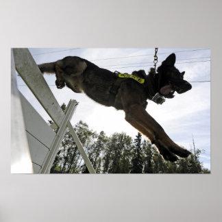 ジャーマン・シェパードの警察犬 ポスター