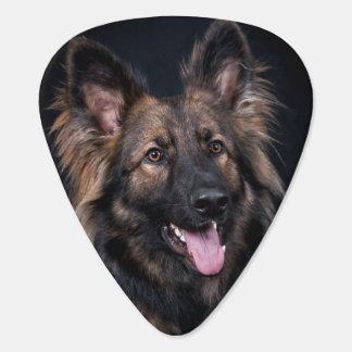 ジャーマン・シェパード犬のアルザスのかわいい忠節 ギターピック