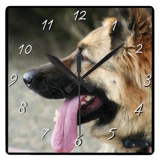 ジャーマン・シェパード犬の正方形の時計 スクエア壁時計