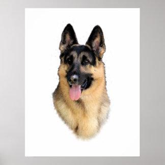 ジャーマン・シェパード犬 ポスター