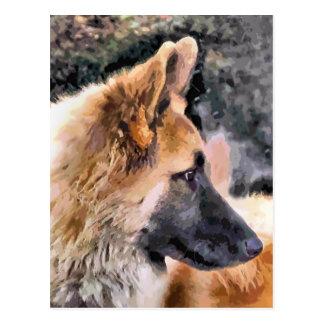 ジャーマン・シェパード犬 ポストカード