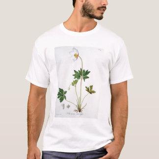ジュゼップ著「Phytographie Medicale」からのヤブイチゲ Tシャツ