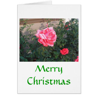 ジュリアハナ著ピンクのバラの歓喜 カード