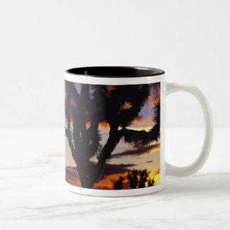 ジョシュアツリーの国民の豪華な日の出 ツートーンマグカップ