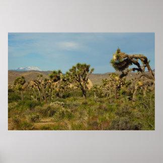 ジョシュアツリーの国立公園の砂漠の景色 ポスター