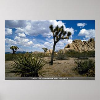 ジョシュアツリーの国立公園、カリフォルニア、米国 ポスター