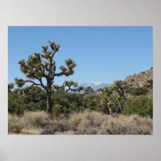 ジョシュアツリーの眺め ポスター