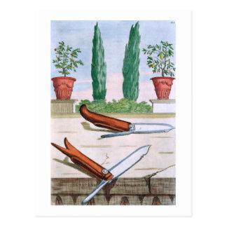 ジョバンニのこうもりによる「Hesperides」からの園芸ナイフ、 ポストカード