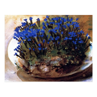 ジョンの歌手のSargent-の青のリンドウ ポストカード