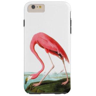 ジョン・ジェームズ・オーデュボンのアメリカのフラミンゴのヴィンテージ シェル iPhone 6 ケース