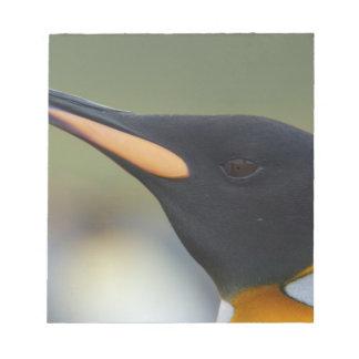 ジョージアの南島、金ゴールド港。 キングペンギン4 ノートパッド