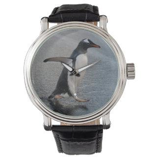 ジョージアの南島、金ゴールド港。 Gentoo 腕時計
