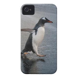 ジョージアの南島、金ゴールド港。 Gentoo Case-Mate iPhone 4 ケース