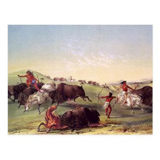 ジョージCatlin -バッファローの狩り ポストカード