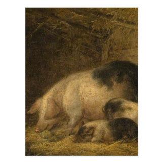 ジョージMorland著ものもらいの雌豚そしてコブタ ポストカード