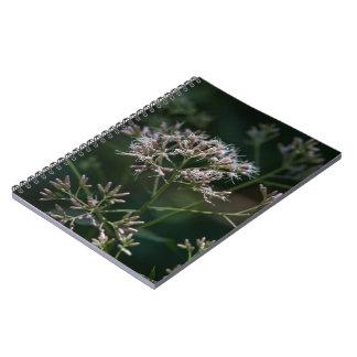 ジョーPyeの雑草の紫色の野生の花の花柄のノート ノートブック