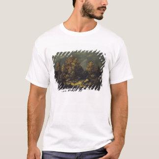 ジーンdeパリの高さ tシャツ