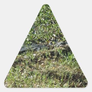 ジーンLafitteのルイジアナの泥地のわに 三角形シール