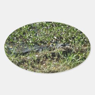 ジーンLafitteのルイジアナの泥地のわに 楕円形シール