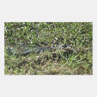 ジーンLafitteのルイジアナの泥地のわに 長方形シール