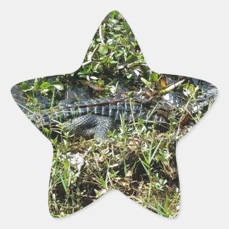ジーンLafitteの終わりのルイジアナの泥地のわに 星シール