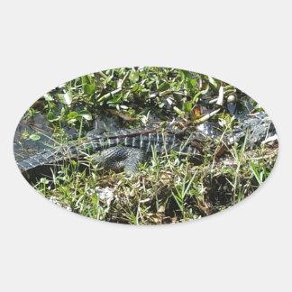 ジーンLafitteの終わりのルイジアナの泥地のわに 楕円形シール