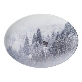 スイスの冬の磁器の大皿 磁器大皿