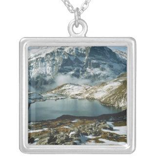 スイス連邦共和国、GrindelwaldのBerneseのアルプス、眺め シルバープレートネックレス