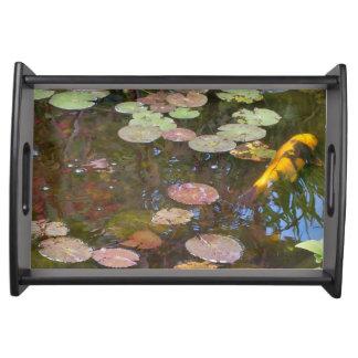 スイレンの浮いている葉およびコイの池のトレイ- Blk トレー