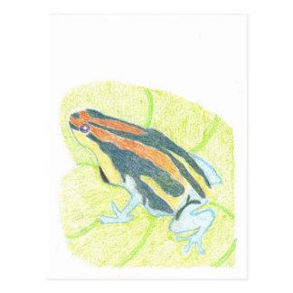 スイレンの浮いている葉のカエル ポストカード
