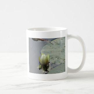 スイレン コーヒーマグカップ