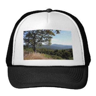 スカイラインドライブ山景色 メッシュ帽子