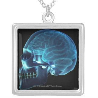 スカルの中の頭脳のX線 シルバープレートネックレス