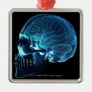 スカルの中の頭脳のX線 メタルオーナメント