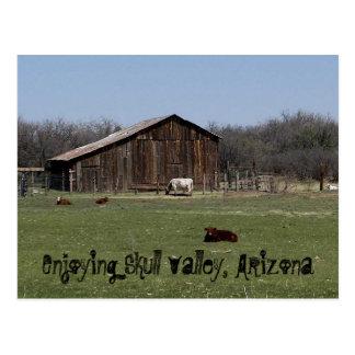 スカルの谷を楽しむこと、アリゾナ ポストカード