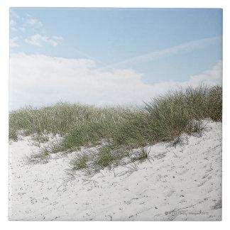 スカンジナビアのビーチの砂丘 タイル