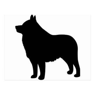 スキッパーキ犬 ポストカード