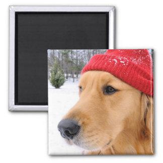 スキー犬色 マグネット